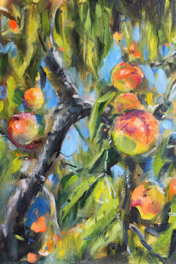 Back Yard Peaches oil painting by Meredith Reynells